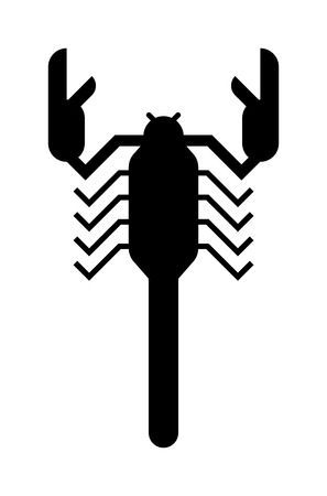 poisonous insect: Scorpion silhouette Scorpion silhouette tattoo poison insect and scorpion silhouette poisonous claw graphic tail. Scorpion silhouette drawing horoscope. Scorpion black silhouette insect animal vector.