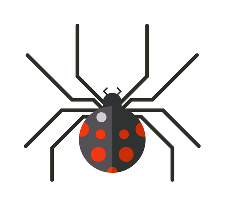 arachnid: Spider silhouette arachnid fear graphic and spider flat silhouette scary, animal poisonous design. Spider silhouette nature phobia. Spider insect danger silhouette vector icon.