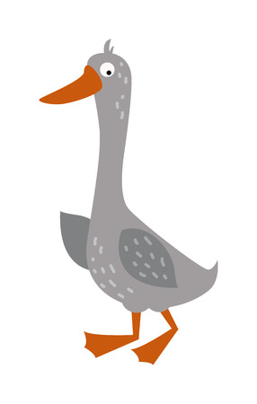 beak: Cartoon goose domestic nature character and cartoon funny goose. Cartoon farm goose cute poultry yellow beak. Cartoon goose character. Cartoon goose with big eyes and yellow beak farm animal vector. Illustration