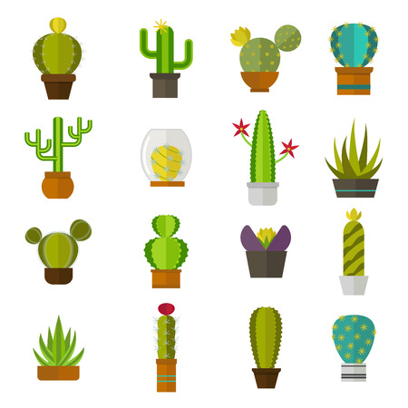 western cartoon: Green desert plant nature cartoon cactus and mexican summer cute cartoon cactus. Cartoon cactus tropical plant traditional west flower. Cute cartoon cactus collection flat nature vector illustration.