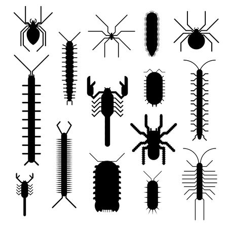 cartoon scorpion: Spiders and scorpions dangerous insects animals vector black silhouette cartoon flat illustration. Asia and Africa scorpions and other poisonous animals black silhouette Illustration