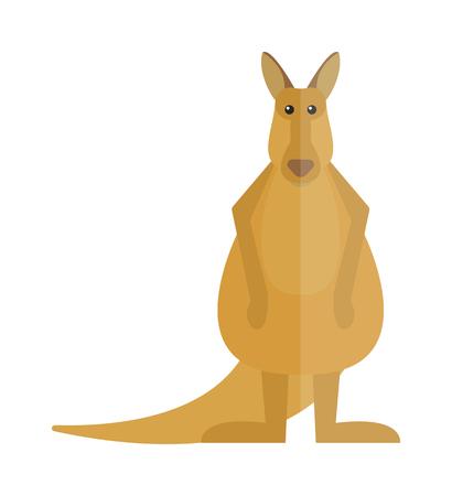 australia animal: Wildlife kangaroo australia cartoon mammal and kangaroo cartoon character vector. Cute kangaroo cartoon australia animal flat vector illustration. Illustration