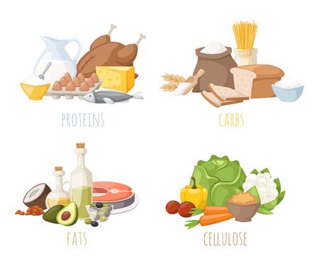 nutrici�n: nutrici�n saludable, prote�nas grasas carbohidratos de la dieta equilibrada, la cocina, el vector culinaria y el concepto de alimentos. prote�nas de nutrici�n grasas saludables Los carbohidratos frutas verduras, carne y nutrici�n saludable. Vectores