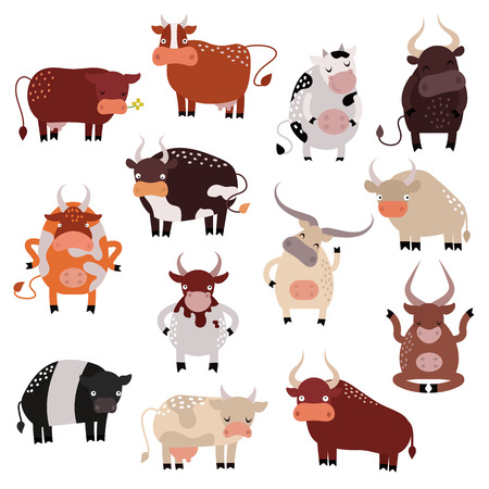 Milk cow bull and cow with calf bull buffalo. Different cows colors dairy farm beef, nature domestic bovine cow. Cartoon cow action set, with cute lovely heifer different in different poses vector. Stock Illustratie