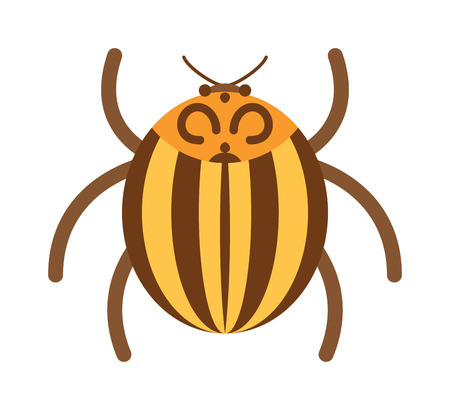 coleoptera: Beetle flat insect bug in cartoon style vector illustreation. Bug isolated. Bug icon flat style. Bug insect. Cartoon bug gold color Illustration