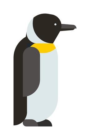 polar life: Antarctica polar penguin, beak pole winter penguin. Funny outdoors wild life south penguin character arctic. Emperor penguin cute animal and nature cold cartoon flat antarctica bird character vector.