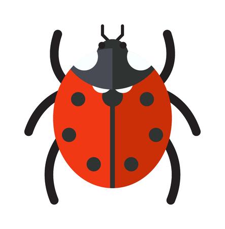catarina caricatura: insecto vector de la mariquita aisladas sobre fondo blanco. escarabajo de la mosca de la mariquita roja del verano plana. insecto mariquita primavera. Mariquita linda del insecto vector de dibujos animados. diseño hermoso insecto.