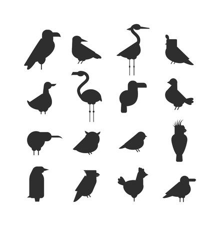 black bird: Birds black silhouette animal drawing and birds black silhouette design wildlife. Wings graphic birds black flight freedom birds. Vector Collection of nature black bird wildlife animal silhouettes. Illustration
