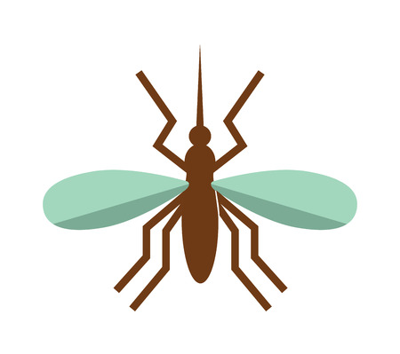 anopheles: Anopheles mosquito vector illustration. Anopheles mosquito isolated on white background. Anopheles mosquito vector icon illustration. Anopheles mosquito isolated vector. Anopheles mosquito silhouette