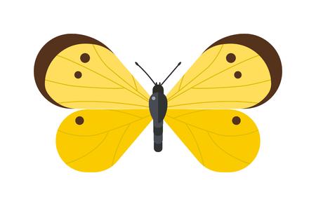 mariposa caricatura: vector de la mariposa plana. mariposa plana aislada en el fondo blanco. ilustración vectorial mariposa plana. mariposa plana de colores aislados sobre fondo blanco. Mariposa aislada. estilo de dibujos animados de la mariposa Vectores