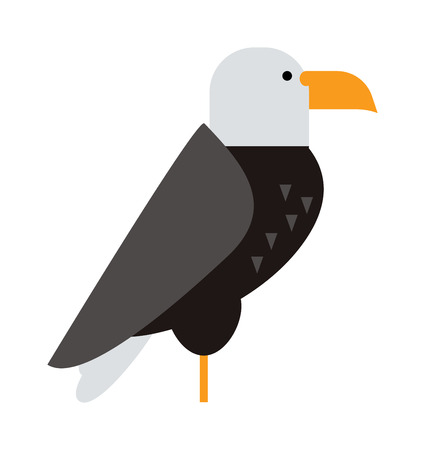 hawk: Eagle bird, brown hawk and flying eagle, wild hawk. Freedom national american symbol eagle falcon bird. North American bald eagle raptor wildlife bird and hawk predator animal cartoon vector.