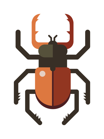 stag beetle: Colorful insects vector stag beetle. Insects biology natural isolated on white background. Insects isolated illustration. Insects vector icon. Fly insects micro view vector. Stag beetle bug insect silhouette