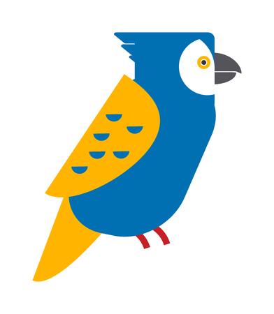 ara: Cartoon parrot wild animal parrot bird. Tropical parrot feather zoo bird, tropical fauna parrot flying ara. Cartoon exotic parrot bird vector illustration. Parrot vector