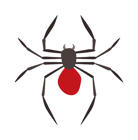 spider: Spider illustration. Black Widow spider. spider over white background. Spider halloween design ison. Spider insect black illustration. Spider cartoon design.
