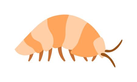 exoskeleton: Wood louse bug and wood louse invertebrate. Small woodlouse creature armored arthropod pest woodlouse animal beetle exoskeleton. Beetle wood louse exoskeleton armadillo armor insect flat vector. Illustration