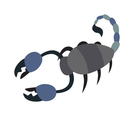 poisonous insect: Scorpion yellow silhouette tattoo poison insect and scorpion silhouette poisonous claw graphic tail. Scorpion silhouette drawing horoscope. Scorpion silhouette insect animal vector. Illustration