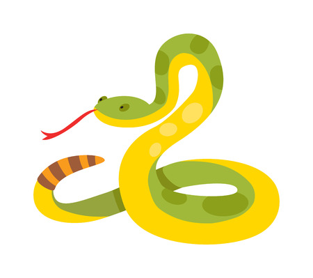 ゴールド python 網目アルビノ ボアコンストリクター野生動物自然蛇ベクトル図です。ボア蛇野生動物自然動物やエキゾチックなボア ゴールド蛇。ボ