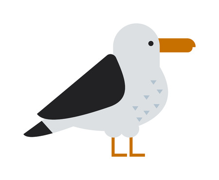 sky dive: Gull flight bird and seabird gull. Natural larus gull beach free bird, wildlife seabird cartoon looking gull. Great black-backed gull larus marinus sea wildlife animal and beautiful bird flat vector.