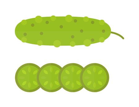 dieting: Fresh cucumber cut sliced cooking illustration in modern flat vector style. Cucumber and slices healthy vegetable organic food. Green cucumber fresh vegetarian ripe plant. Dieting cucumber.