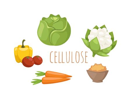 celulosa: set vector de celulosa de alimentos vegetales. Repollo, pimientos, tomates, zanahorias, celulosa gachas aislada en el fondo blanco. concepto de celulosa alimentos saludables. verduras de celulosa establecidos.