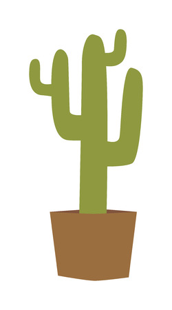 house plant: Cactus isolated vector illustration. Cactus isolated plant green nature and succulent cactus isolated. Cactus isolated desert thorn and green cactus isolated. Cactus desert garden green house plant. Illustration