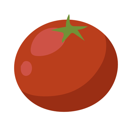 isolated ingredient: One fresh red tomato isolated on white. Tomato isolated vector red vegetable and food ripe tomato isolated. Tomato isolated ingredient juicy vegetarian healthy food. Single bright nutrition plant.