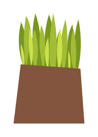 grass roots: Green grass showing roots. Green grass with earth crosscut. Grass with earth green, nature, background and green nature grass with earth. Ground dirt spring garden texture concept grow agriculture. Illustration