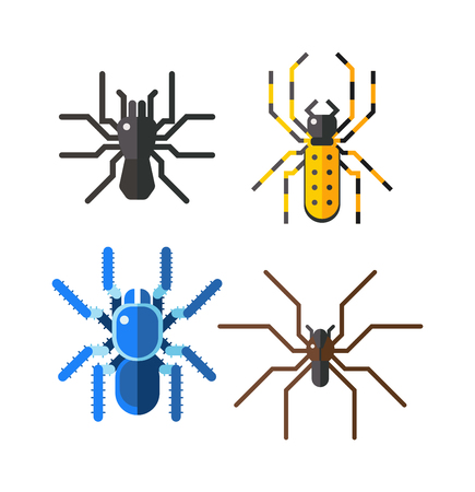 arachnophobia: Spiders, collection isolated on white background vector. Large tarantula spiders isolated with an orange color body. Spiders isolated nature animal, insect brown predator wild danger spider.