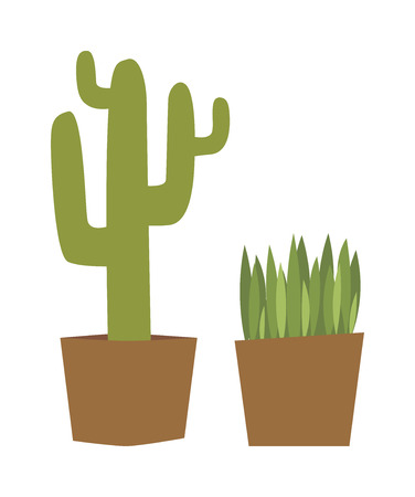 houseplants: Flat style houseplants and cactus flowers pots decoration shelf vector icons. Set of green indoor vector house plants icons. House plants isolated nature flora decoration. House plants gardening. Illustration