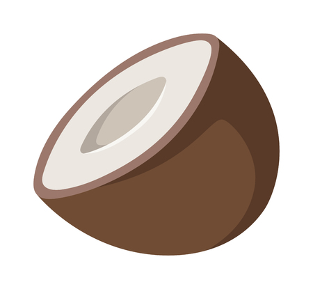 isolated ingredient: Half coconut isolated on white and natural coconut tropical food. Coconut food and coconut exotic brown food with sweet milk fruit. Break nutrition natural ingredient palm diet coconut food.