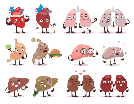 Set cartoon internal human organs with cute faces. Vector illustration human organs characters. Human organs characters anatomy health medical design and body physiology kidney liver character.