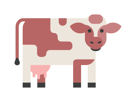 hoofed mammal: Brown cow isolated on white background and farm cow isolated domestic mammal. Cow isolated vector animal and cow isolated standing, farm agriculture, flat face brown head funny cartoon animal. Illustration