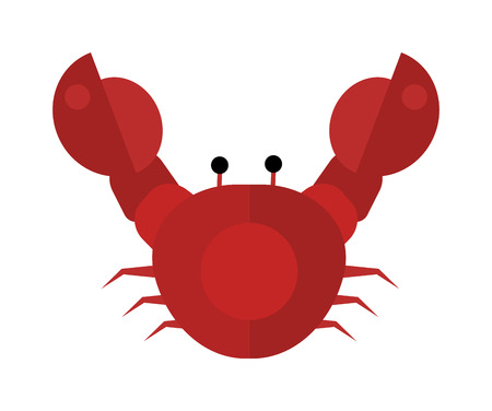 whole creature: Funny cartoon crab modern design and crab flat vector. Fat sea animal crab and seafood crab wildlife. Red crab marine and cooking cartoon dinner crab charaxter. Comic crab aquatic cuisine. Illustration