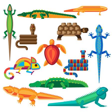 serpiente cobra: Reptiles y anfibios vector conjunto. Reptiles de la fauna del vector icono de dibujos animados camaleón gráfico de serpientes y reptiles vector zoo arte salvaje. anfibio vector, cocodrilo piel de iguana animales tropicales.