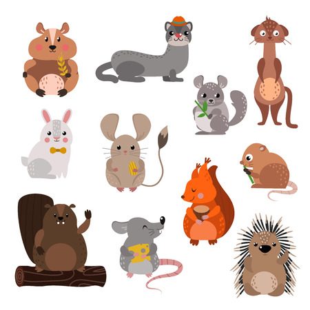 isolated squirrel: Cute cartoon rodents animals, mouse cartoon in action set, with nine different cartoon rodents standing animals confident. Cartoon rodents mammal nature, mouse character, wildlife rat set.