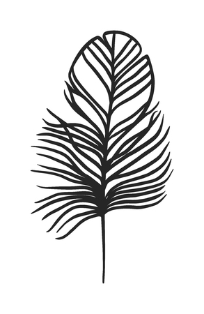 Hand Drawn stylisé boho plume couleur noire et doodle tribal ornement plume noire. Plume icône isolé. Noir plume nature oiseau. plume doodle noir art vintage vecteur graphique décoratif. Vecteurs