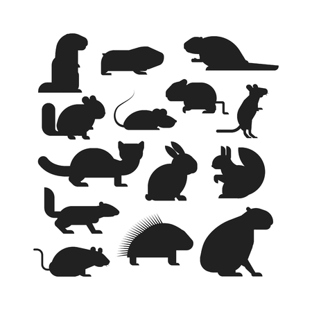 rodents: Cute cartoon rodents animals, mouse cartoon in action set, with nine different cartoon rodents standing animals confident. Cartoon rodents mammal nature, mouse character, wildlife rat set.
