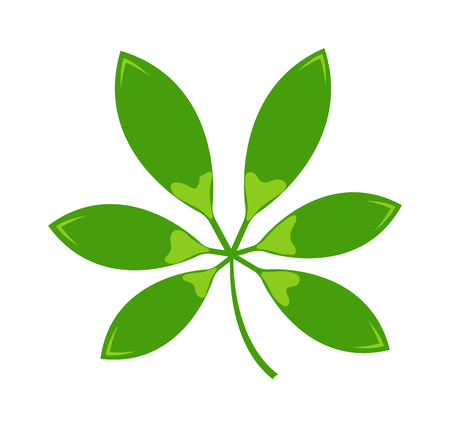 four leafs clover: Vector tropical leaves Green tree leave. Natural green leaf isolated. Leaf element floral color garden art. Tropical leave tree element. Natural green tropical leave flat style