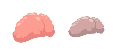 Stupid and clever vector health concept. Smart mind education, isolated stupid and clever brains. Human intelligent communication stupid and clever people brain organ concept. Illustration