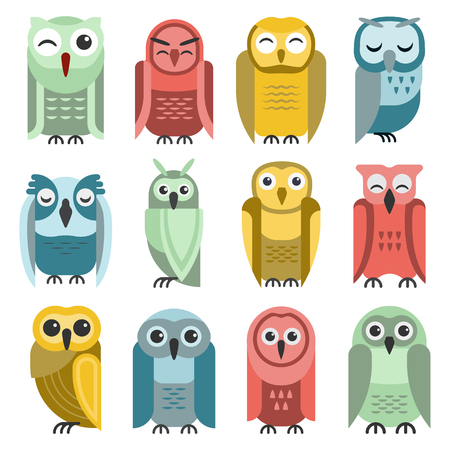 behavior: Cute vector collection of bright cartoon owls. Animal character cartoon owl comic funny collection. Doodle cheerful birds behavior cartoon owl. Adorable different owl various expression birds.