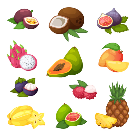 1,928 Vegetarian Mix Stock Vector Illustration And Royalty Free ...