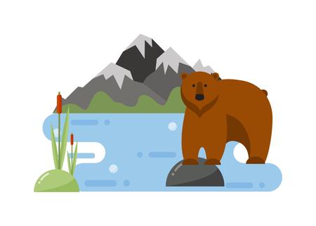 Fun zoo cartoon bear and cartoon bear illustration. Cute cartoon brown bear character and wild cheerful cartoon bear animal vector. WIld forest animal grizzly cartoon bear. Cartoon bear design.