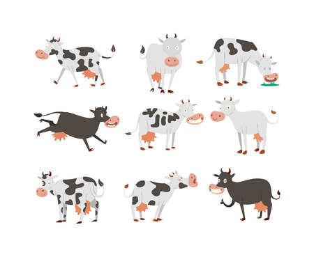 bovine: Milk cow bull with calf bull buffalo. Different cows colors dairy farm beef, nature domestic farm animals. Cartoon cows action set, with cute lovely heifer different in different poses vector. Illustration