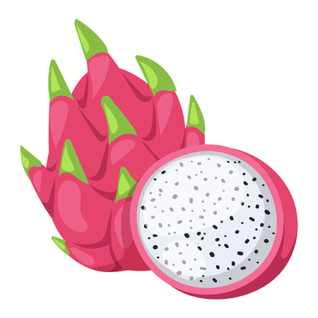 dragonfruit: Pitaya or dragon fruit vector tasty nature asian diet delicious. Exotic dragon fruit pink tropical fresh pitaya fruit. Healthy pitahaya cactus pitaya fruit organic nutrition juicy bright dragonfruit.
