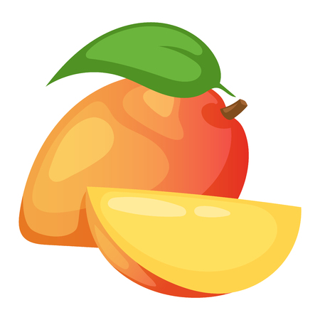 freshness: Slices of mango fruit and leaves over white. Sweet fresh juicy yellow mango fruit tropical food. Nutrition delicious mango fruit ingredient dessert healthy slice. Freshness organic tropical food.