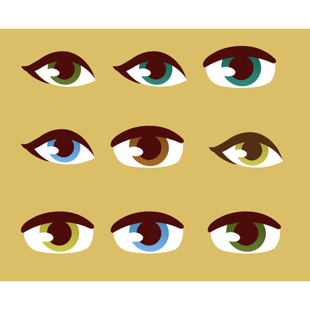 human eye: Set of human real different open eyes huge size clean attractive. Young face beauty human eye optical, eyebrow element vector. Eyeball care look human eye detail person medical focus.