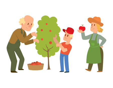 green vegetable: Picking fresh vegetable in garden people character. Agriculture farm green garden harvest people organic outdoors agriculture people. Happy growth garden harvest working people. Illustration