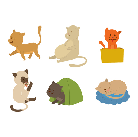 playfull: Cat cartoon style vector silhouette. Cute domestic cat animal playfull. Cartoon cat young adorable tail symbol playful. Cartoon funny domestic pussy kitty character Illustration