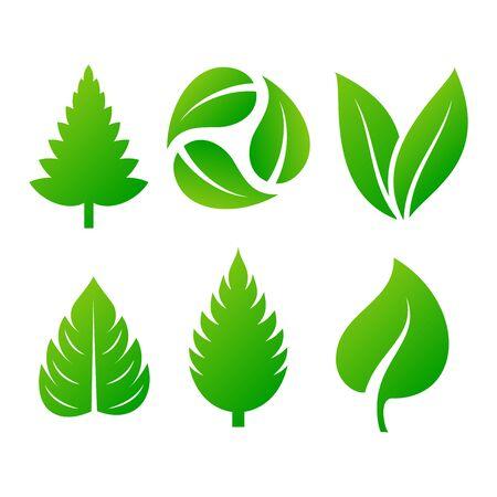 Green leaf eco design element icon. Leaf icon vector illustration friendly nature elegance symbol. Decoration flora leaf icon on white. Natural element ecology symbol green organic icon Ilustração