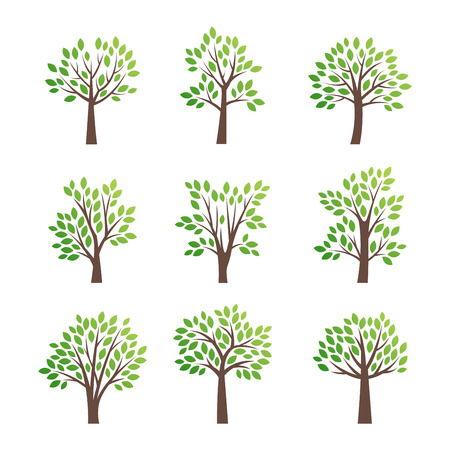 Stylized vector tree   icon. Vector tree flat silhouette isolated on white. Tree shape and foem symbol.